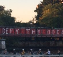 Defy The Odds Sticker
