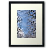 Winter in the forest IV Framed Print