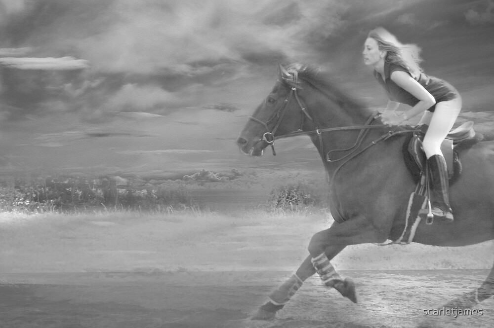 Gallop by scarletjames