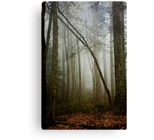 Misty Woods Canvas Print
