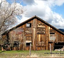 Dilapidated Barn, Williams, Arizona by Kimberly Miller