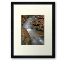 Silky Smooth Framed Print