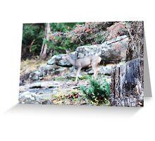 mamma deer Greeting Card
