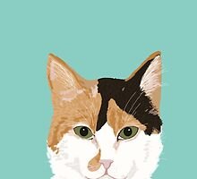 Calico Cat - Cute cat black, white, tan, orange tabby cat, cute kitten by PetFriendly