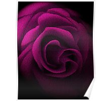 Pink Textured Rose Poster