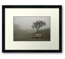 Phoenix Park Fog Framed Print