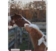 Kisses iPad Case/Skin