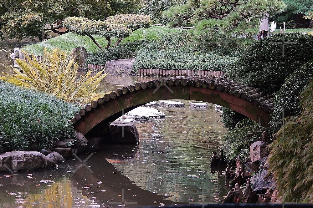 Fall in Chinese garden by loiteke