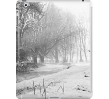 B&W Snow iPad Case/Skin