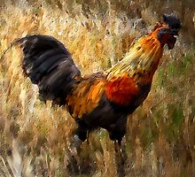 Rooster Avartar by Simon Duckworth