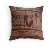 A meeting of ages. Throw Pillow