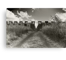 Dirt Track To Suburbia Canvas Print