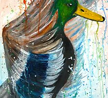 Mallard  by Lauren Pigford