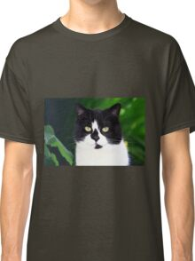 Black and white cat looking at camera Classic T-Shirt