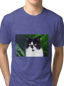 Black and white cat looking at camera Tri-blend T-Shirt
