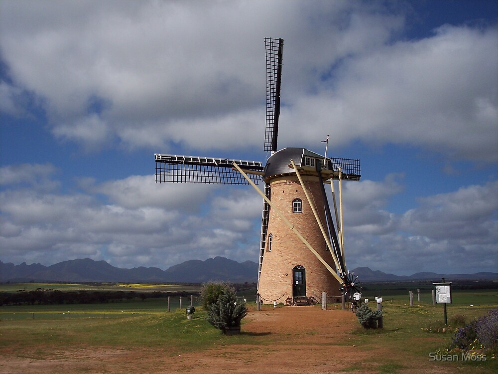 Windmill in the West by Susan Moss