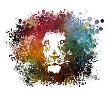 King Lion Photographic Print