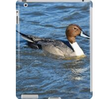 Northern Pintail Duck iPad Case/Skin