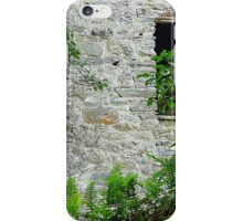 50 Shades Of Green On Grey iPhone Case/Skin