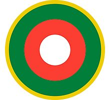 Roundel of the Malagasy Air Force  Photographic Print