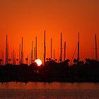 Marina Del Rey Sunset by Amos Zhang