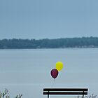 Sad lonely baloons by WolfmanK
