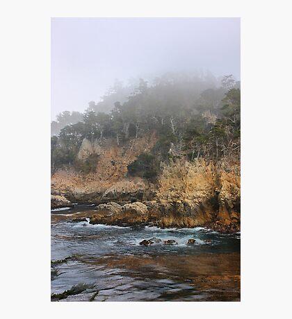 Point Lobos Photographic Print