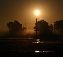OCTOBER 29 SUNRISE IN THE FOG by SMOKEYDOGSOCKS