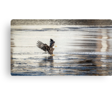 Touching Down Canvas Print