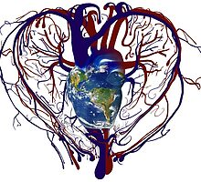 "Anatomical Kind ""Earth Heart"" Medical Circulatory Get Well Kindness by O O"