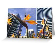 Paradise in Corporate Land? Greeting Card