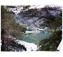 Valley lake Poster