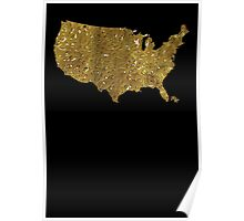 The United States of BHO Poster