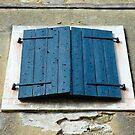 Windows & Shutters - 5 by Denis Molodkin