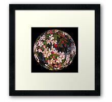 Blossom Ball Framed Print