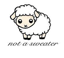Not a Sweater by Bianca Loran