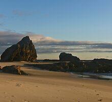 Elephant Rock by Brad Walker
