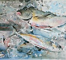 The Catch by Lara  Cooper