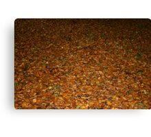 Wet Leaves Canvas Print