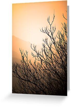 Mountain Silhouette by Jeff Harris