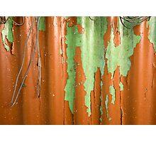 Peeling lines Photographic Print