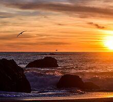 Sonoma Coast Sunset by smilinginsonoma