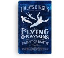Flying Graysons Canvas Print