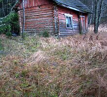 'Slow Death of Sauna' (HDR) by Petri Volanen