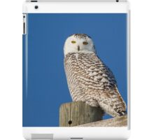 Who Is Looking At Me iPad Case/Skin
