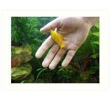 my yellow fish:)) Art Print