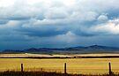 Foothills Sky by wwyz