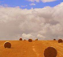 Hay bales #2 by Justine Devereux-Old