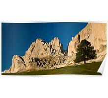 Rosengarten panorama Poster