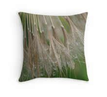 Sometimes...all you hear are whispers Throw Pillow